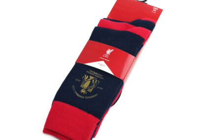 Liverpool Champion sock
